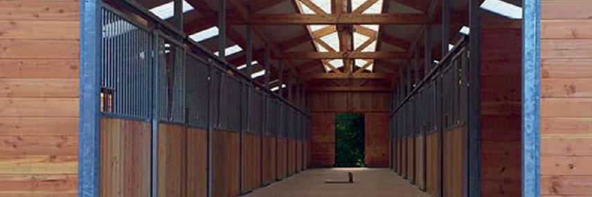 construction boxes à chevaux et sanitaires, fumiere à Saint-Avold