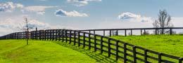 Vente fabrication pose clôture et abris pour chevaux